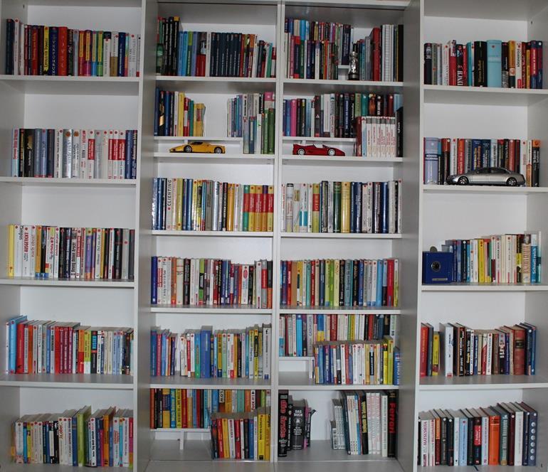 WS Bücherregal erste Ansicht